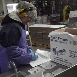 Energy-saving refrigeration at Wyman's of Maine