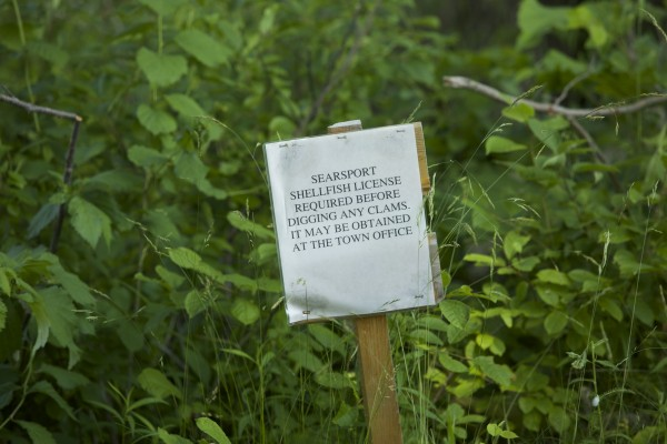 A warning sign reminds clammers they need to have a license before digging for clams in Searsport, Maine.