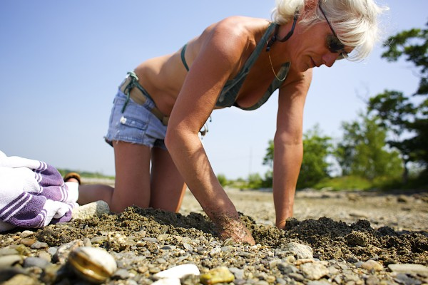 Shelly Carlson of Manchester, Connecticut digs for clams on Sears Island in Maine. A federal agency investigated claims that there is significant pollution in an area of the harbor adjacent to the GAC Chemical Corp. plant.