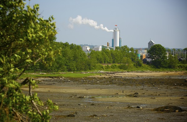 A federal agency investigated claims that there is significant pollution in an area of the harbor adjacent to the GAC Chemical Corp. plant.