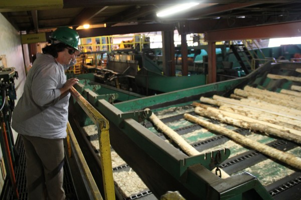 Lega Medcalf, a teacher at the Lake Region Vocational Center, took at tour of Moose River Lumber, a mill in Jackman. The tour was part of a professional development workshop to teach teachers about the forest-products industry.