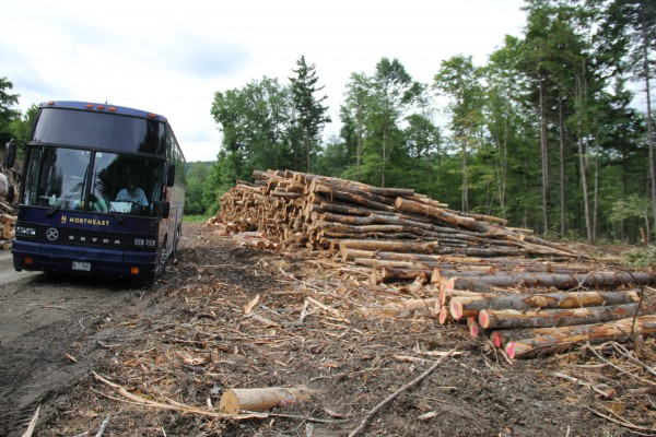 A tour bus brought teachers deep into a forest in Jackman that was being harvested. This area is owned by Frontier Forest LLC.
