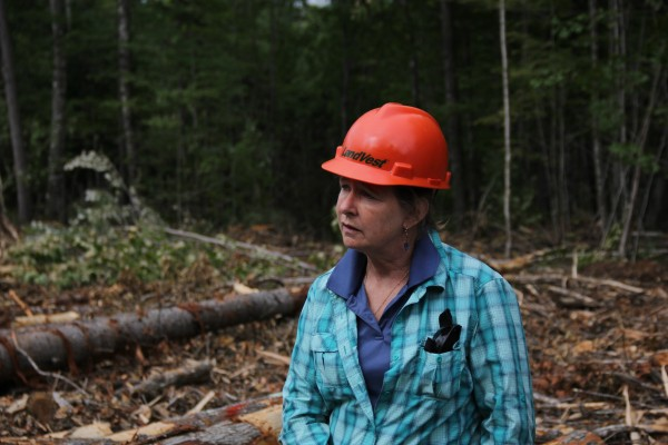 Susan Aygarn, a forest manager at LandVest, spoke to teachers about the forest-products industry.