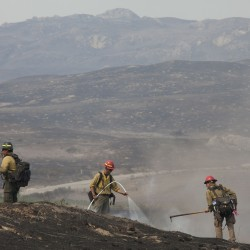 Firefighters work in a field that was hit by the Carlton Complex Fire, near Brewster, Washington July 20, 2014.
