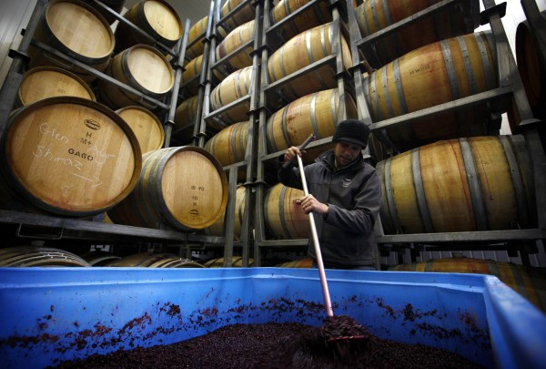Winemaker John Bown stirs a vat of fermenting grapes at the Frogmore Creek winery located on the outskirts of Hobart in Tasmania on June 3.
