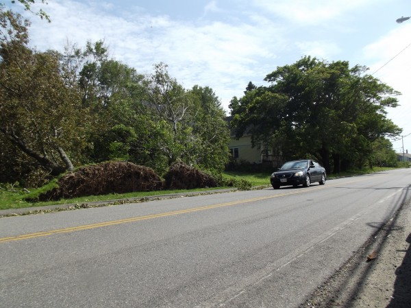 A car travels east on Route 189 in Lubec where two trees were uprooted and  fell away from the highway during the weekend storm.