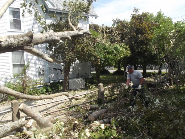 A worker cleans up debris from a tree that fell and struck a glancing blow to the house behind him.