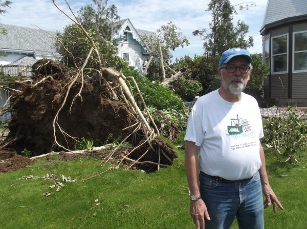 Bill Jessee of Lubec stands in the back yard of his summer home while talking about a tree that blew down on his property on Saturday. The tree fell between his home and a neighbor's, striking a glancing blow to the other house.