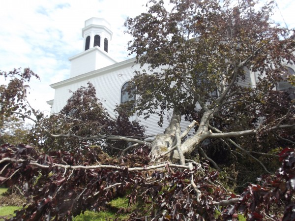 A tree leans against the Lubec Congregational Church after the weekend storm that battered coastal Washington County.