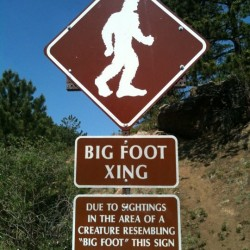 Bigfoot coming to Maine next month