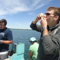 Oyster Farms & Seal Watching Tour on The River Tripper