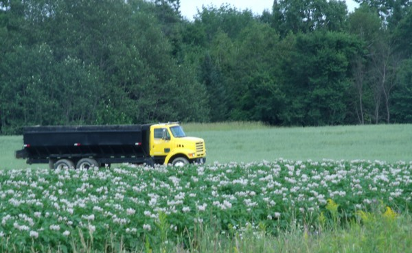A potato truck sits in a field in Littleton last year.