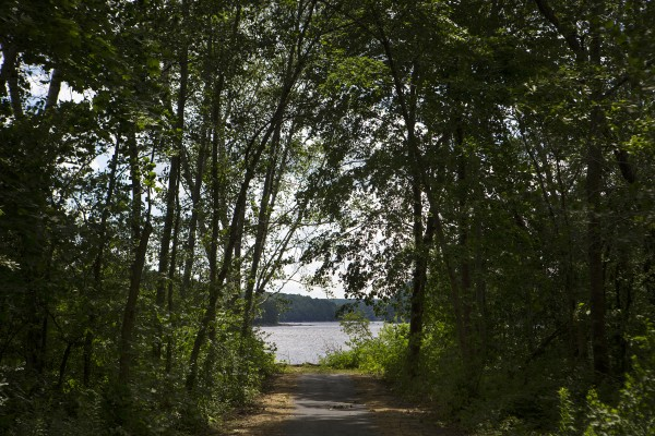 The new trail at Turtle Head Park is seen July 9 in Hampden near Hamlin's Marina and McLaughlin's at the Marina.