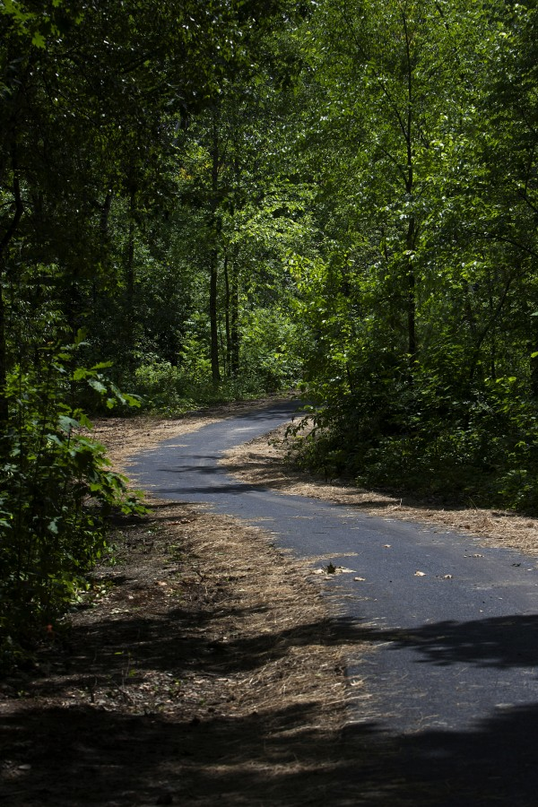 The new paved trail at Turtle Head Park is seen July 9 in Hampden near Hamlin's Marina and McLaughlin's at the Marina.