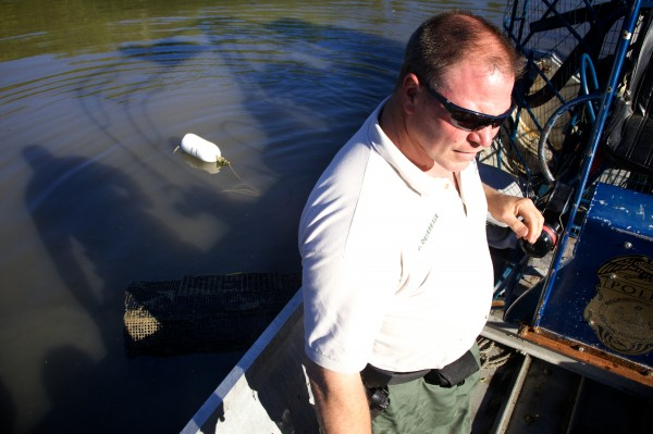 Brunswick Marine Resources Officer Dan Devereaux stands aboard an airboat after checking a trap designed to catch invasive green crabs in Buttermilk Cove on Friday morning.