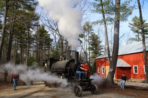 19 tons of steam powered glory, the restored Lombard Log Hauler shoots steam above the trees at the Maine Forest and Logging Museum in Bradley