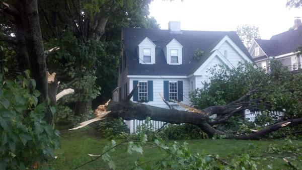 A tree fell in front of a home in York on Tuesday as a storm ripped through Maine.