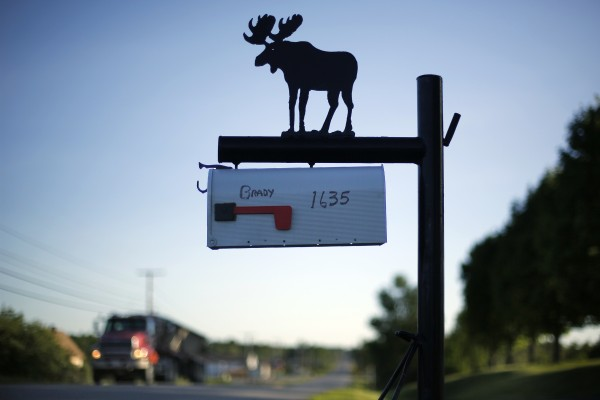 A moose silhouette adorns a mailbox on Route 1 in Monticello, Maine.
