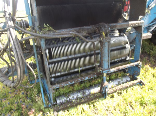 Close-up view of mechanical raking equipment used to harvest wild blueberries, which are collected by the multiple tines; the tines are similar to those on a blueberry rake for harvesting blueberries by hand.