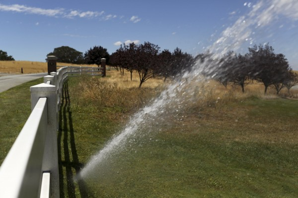 "A water sprinkler is pictured at a golf course near San Jose, California July 22, 2014. A Northern California water provider is considering hiring investigators dubbed ""water cops"" to investigate reports of water-wasting, one of several ways public utilities and local municipalities are preparing to help enforce new water conservation rules expected to go into effect next month amid ongoing drought."