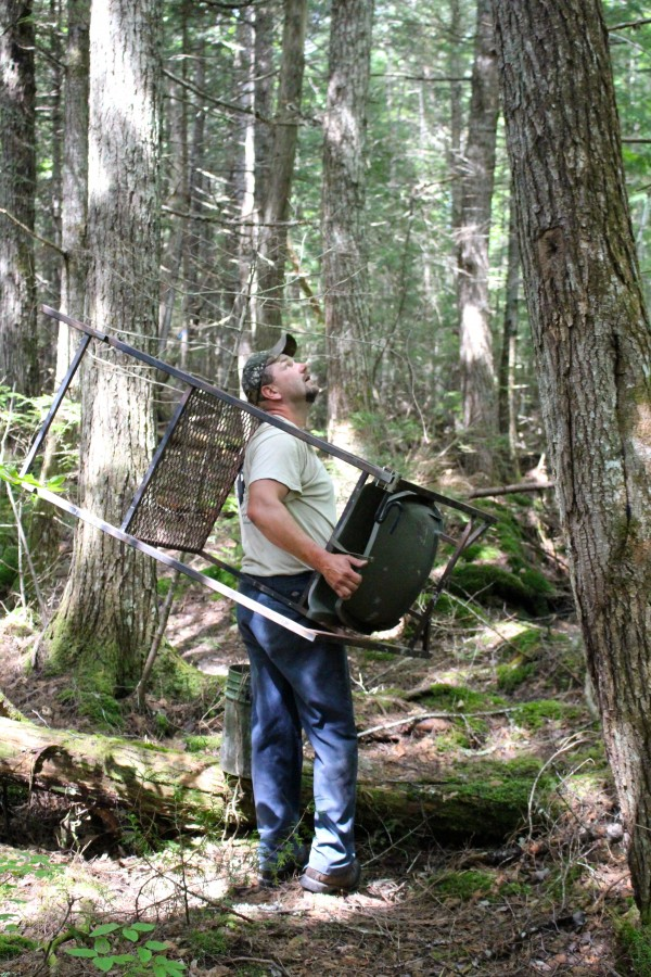 Troy White, registered master Maine guide and owner of Mid Maine Outfitters, sets up a custom-made tree stand built by his father at one of his 100 authorized bait sites in timberland not far from Lincoln in late July 2014 in preparation for Maine's fall bear hunting season. White guides about 40 bear hunters annually from his camp and taxidermy shop in LaGrange.