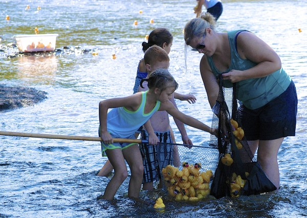 Heidi Carter works with members of the Fort Kent Girl Scouts and their friends to collect thousands of plastic ducks at the finish of the International Duck Derby in Fort Kent on Sunday.