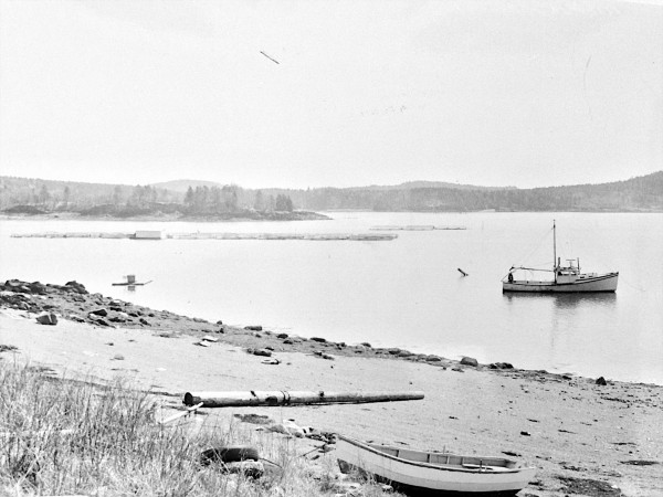 The Roosevelt Campobello International Park is marking its 50th anniversary on Saturday.