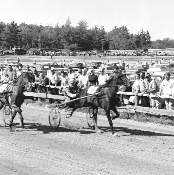 Blue Hill Fair horse races Circa 1965