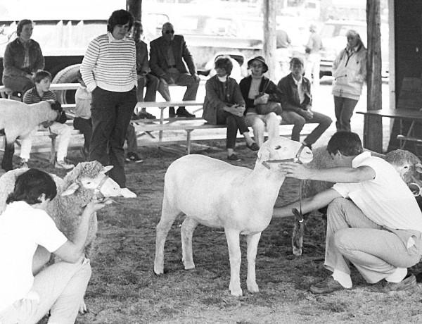 Blue Hill Fair Circa 1986