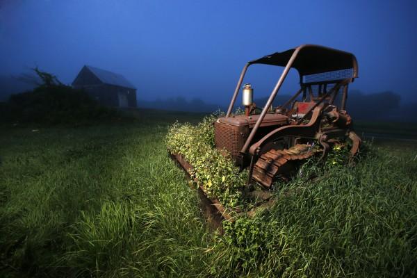 A 1951 International bulldozer spends another day on Rose Minott's property in Brunswick, Maine.