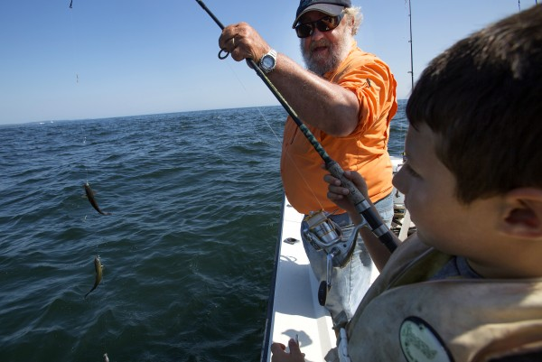 Will Caron (right) has some help from Capt. Pete Douvarjo bringing in his line full of pollack during a fishing trip on Tuesday in Sedgwick.