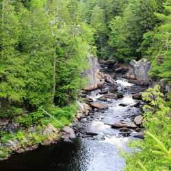 New Appalachian Mountain Club president delights in Moosehead wilderness
