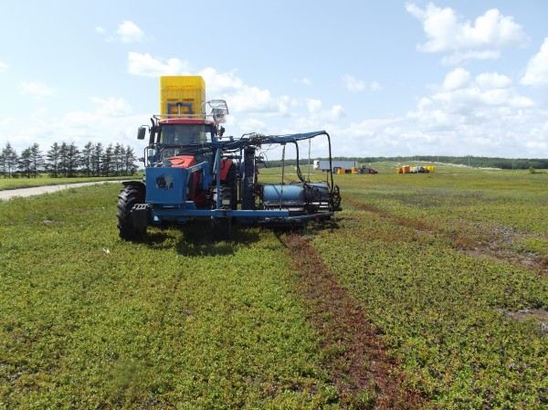 Machines -- like this tractor harvesting a blueberry barren in Columbia for Cherryfield Foods recently -- are playing an increasing role in the harvest of Maine's wild blueberry crop.