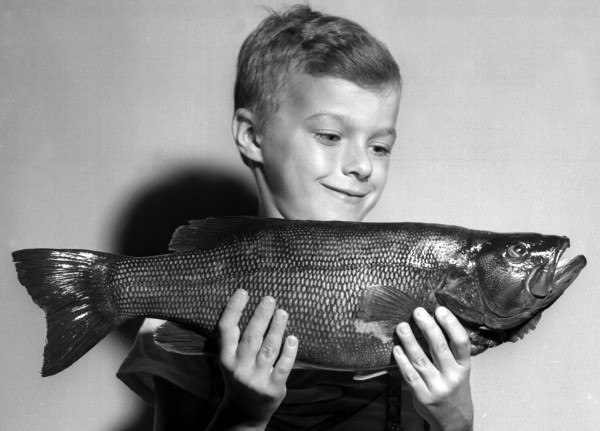 Harry Rossignol, 8, of South Brewer, displays a 4-pound smallmouth bass that he caught at Chemo Pond in 1957. The young man hooked and landed the smallmouth on a red and white &quotjitterbug&quot bait.