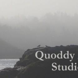 Quoddy Artists Studio Tour 2014