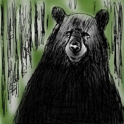 Tuesday, April 16, 2013: Black bear cruelty and court fees