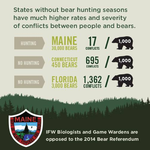 The Maine Department of Inland Fisheries and Wildlife posted this infographic to its Facebook page on Sept. 5, 2014, comparing the rate of bear-human conflicts in Maine with rates in Connecticut and Florida, two states without bear hunts.