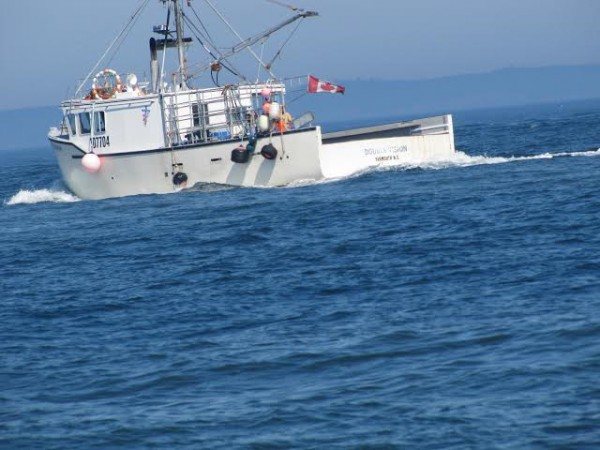 Canadians heat up lobster fishing in gray zone off for Lobster fishing in maine