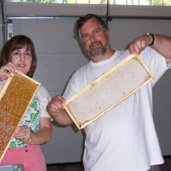Introduction to Beekeeping Course