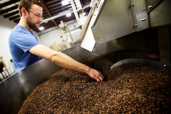 Wicked Joe Roast Master Bill Guddeck picks a few burnt beans out of thousands in a 150-pound batch of roasted coffee in Topsham.