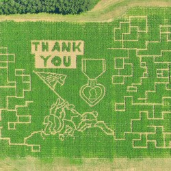 Annual Caribou corn maze takes on patriotic pattern