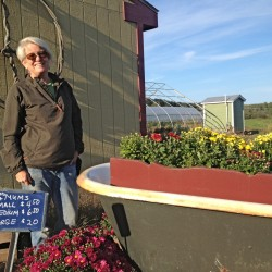 Cape Elizabeth family farm hopes to save itself by raising money to modernize