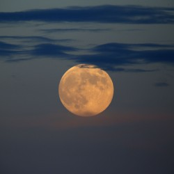 Supermoon hangs in the summer sky