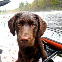 Motoring the Maine coast in an outboard U-Haul: A true story