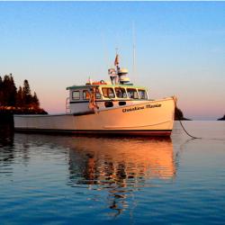 'Ice Harbor' explores the magic of Maine
