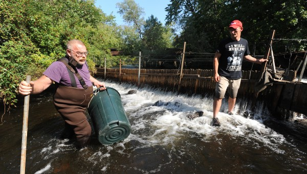 David Whitten and his son Theodore &quotT.J.&quot Whitten check the eel weir on the East Branch of the Sebasticook River in Newport on Aug. 27.