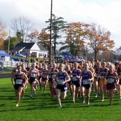Ellsworth, MDI win PVC large-school titles; Orono sweeps small-school competition