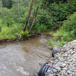 Downeast Lakes Land Trust touts new culvert design aimed at restoring trout habitats