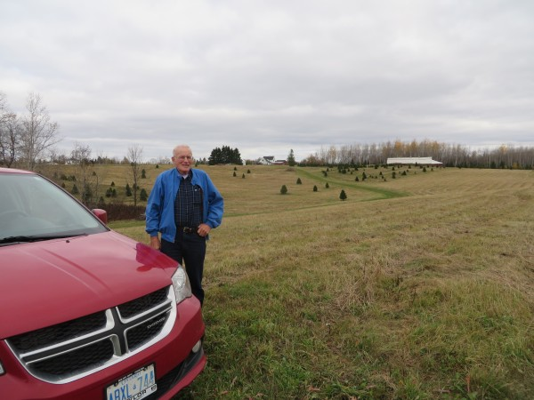 Bob Tweedie of Westfield stands in his family's former potato fields, now planted with Christmas trees. His childhood home and the family's potato barn are in the background.