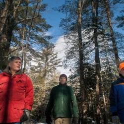 State, town team up in forest conservation effort
